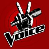 The Voice: What It's ActuallyAbout